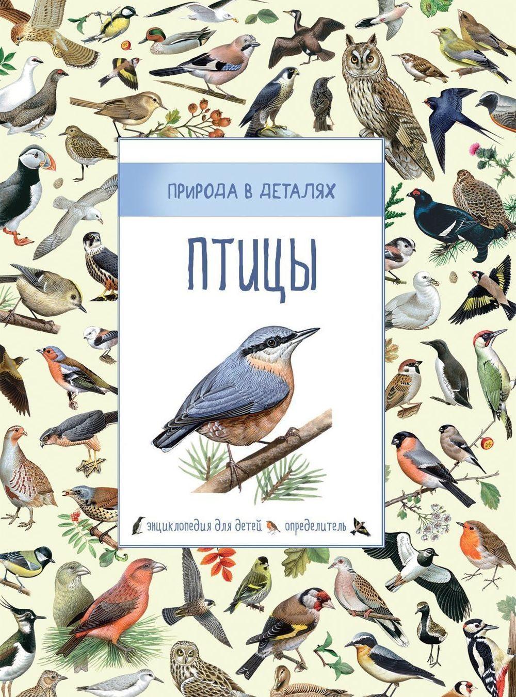 Купить Птицы, Сюзанна Дэвидсон, 978-5-353-08374-0