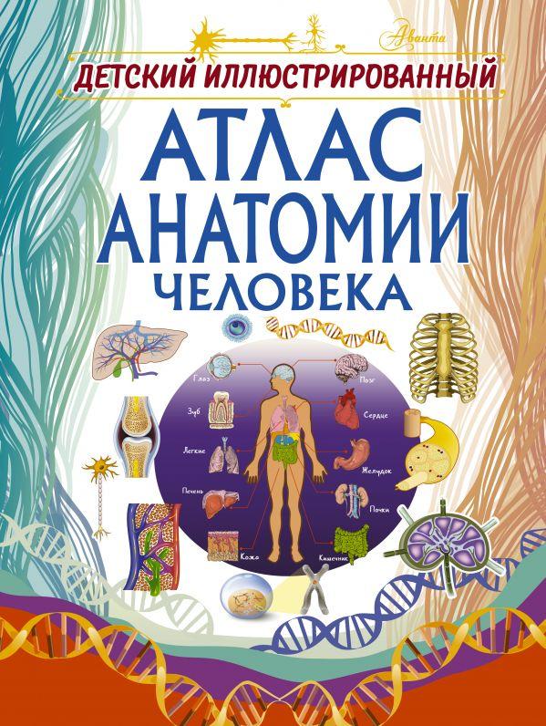 Купить Детские энциклопедии, Детский иллюстрированный атлас анатомии человека, Анна Спектор, 978-5-17-109986-2
