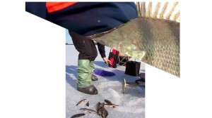 изображение Мормышка вольфрамовая Lucky John Капля . 5шт. (8228K060-G) #3