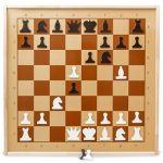 Шах и Мат. 5 лучших книг по шахматам