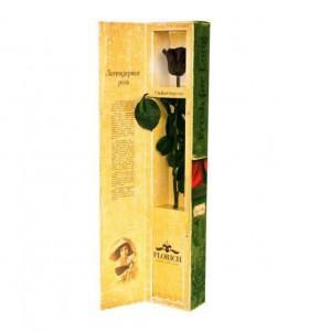 фото Долгосвежая роза Черный Бриллиант в подарочной упаковке #2