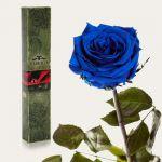 фото Долгосвежая роза Синий Сапфир в подарочной упаковке #2