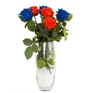 фото Долгосвежая роза Синий Сапфир в подарочной упаковке #4