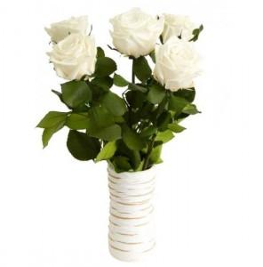 Подарок Три долгосвежих розы 'Белый Бриллиант'