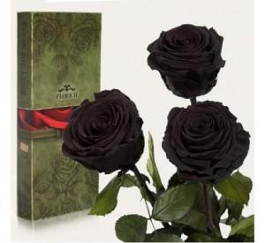 Подарок Три долгосвежие розы Черный Бриллиант в подарочной упаковке