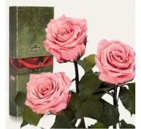 Подарок Три долгосвежих розы Розовый Кварц в подарочной упаковке