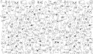 Подарок Обои-раскраски 'Веселые коты' (60 х 100 см)