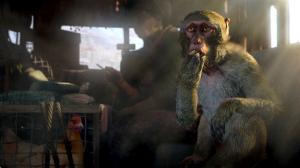 скриншот FAR CRY 4. Limited edition PS4 - FAR CRY 4. Специальное издание - Русская версия #2