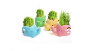 Подарок Керамический травянчик с семенами Слон