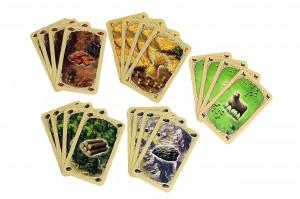 фото Настольная игра Hobby World 'Колонизаторы. Быстрая карточная игра' (1072) #4