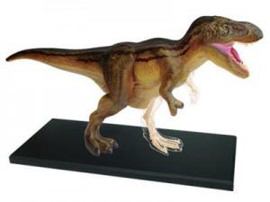 Объемная анатомическая модель 'Динозавр Тираннозавр'