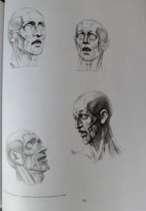 фото страниц Рисунок. Основы учебного академического рисунка #12