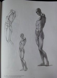 фото страниц Рисунок. Основы учебного академического рисунка #13