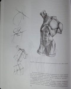 фото страниц Рисунок. Основы учебного академического рисунка #19