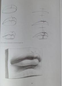 фото страниц Рисунок. Основы учебного академического рисунка #22