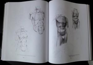 фото страниц Рисунок. Основы учебного академического рисунка #35