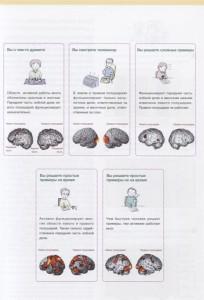 фото страниц Развитие памяти и интеллекта. Рабочая тетрадь для тренировки мозга №1 #4