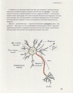 фото страниц В моей голове. Как устроен мозг и зачем он нам нужен #5