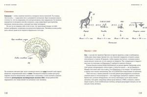 фото страниц В моей голове. Как устроен мозг и зачем он нам нужен #10