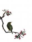 фото страниц Суми-э — японская живопись тушью #7
