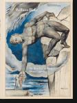 Книга William Blake. The drawings for Dante's Divine Comedy