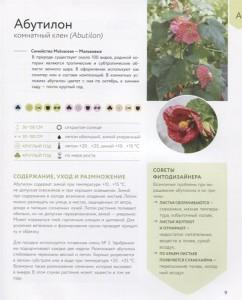 фото страниц Зеленый оазис. Комнатные растения от А до Я #2
