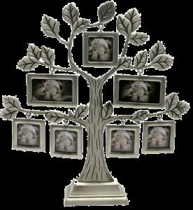 Подарок Фоторамка Darshan 'Родовое дерево' (DN25308)