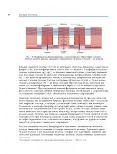 фото страниц Анатомия стретчинга. Большая иллюстрированная энциклопедия #12