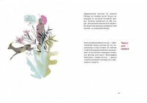 фото страниц Тайная история трусов для почти взрослых #10