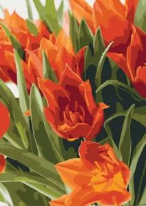 Картина по номерам Идейка 'Яркие тюльпаны - 2' 40x50см (KHO3012)