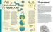 фото страниц Воно заразне. Інфекційний світ патогенів та мікробів #6