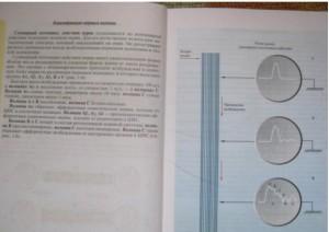 фото страниц Физиология человека. Атлас динамических схем #8