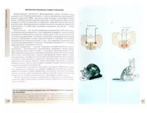фото страниц Физиология человека. Атлас динамических схем #6