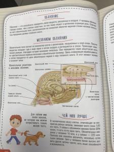 фото страниц Атлас анатомии человека #6