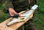 фото Доска для разделки рыбы с зажимом (бук) (102151) #2