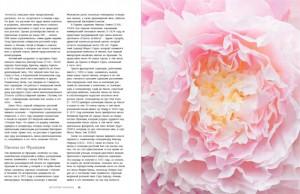 фото страниц Пионы. Роскошные цветы для дома и сада #8