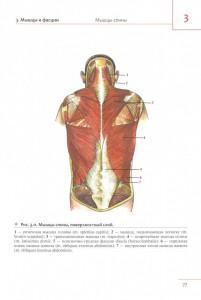 фото страниц Универсальный атлас анатомии человека #4
