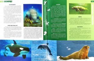 фото страниц Енциклопедія необхідних знань школяра #5