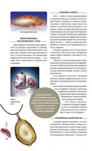 фото страниц Драгоценные камни. Гид по миру ювелирных секретов #9