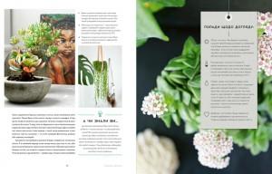 фото страниц Міські джунглі. Або як рослини допомагають нам творити гармонію і стиль #5