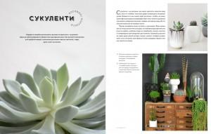фото страниц Міські джунглі. Або як рослини допомагають нам творити гармонію і стиль #6