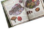 фото страниц Minecraft Карти. Довідник першопрохідця #18