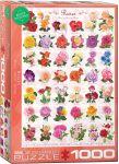 Пазл EuroGraphics 'Розы', 1000 элементов