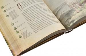 фото страниц Чарівні істоти українського міфу (суперкомплект з 3 книг) #6