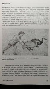 фото страниц Византийская кунсткамера. Неортодоксальные факты из жизни самой православной империи #5