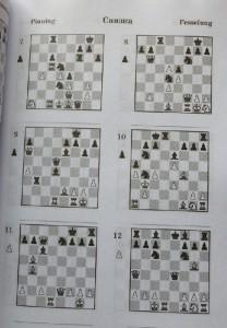 фото страниц 2000 шахматных задач. 1-2 разряд. Часть 1. Связка. Двойной удар #4