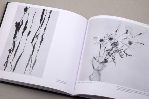 фото страниц Искусство цвета и формы (суперкомплект из 2 книг) #15