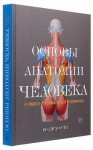 Основы анатомии человека. Наглядное руководство для художников