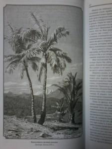 фото страниц Путешествия на Берег Маклая #11
