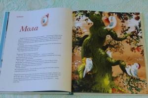 фото страниц Книга про счастье #8